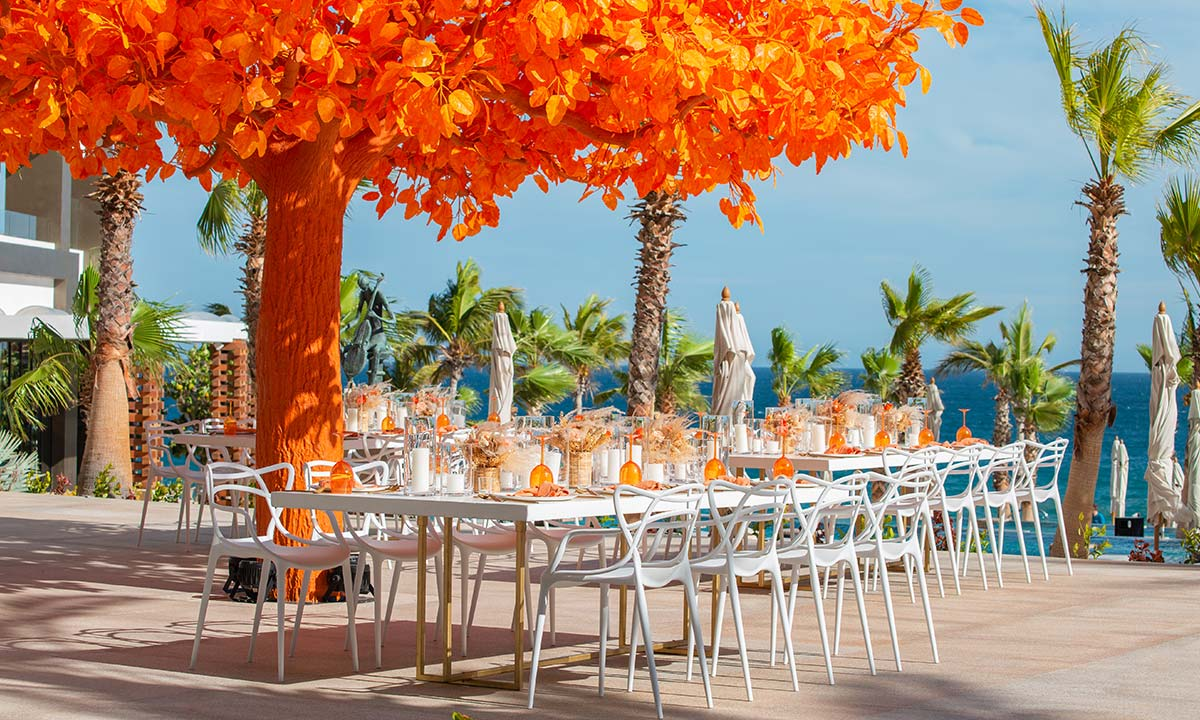 event at garza blanca los cabos orange tree